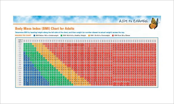 11+ BMI Chart Templates -DOC, Excel, PDF Free  Premium Templates