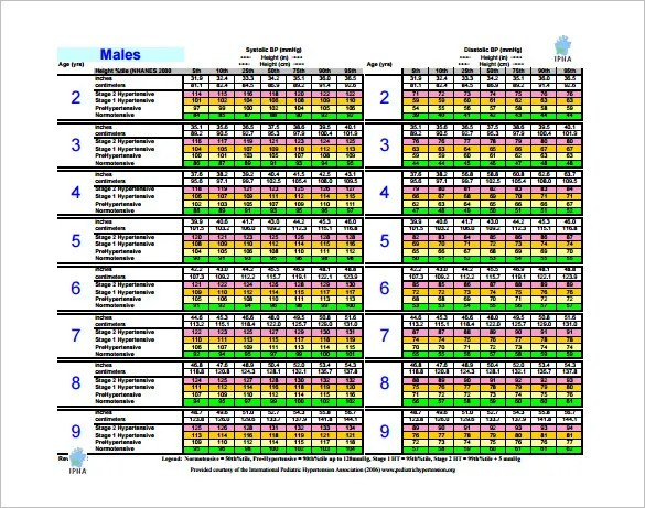 9+ Blood Pressure Chart Templates - Free Sample, Example, Format