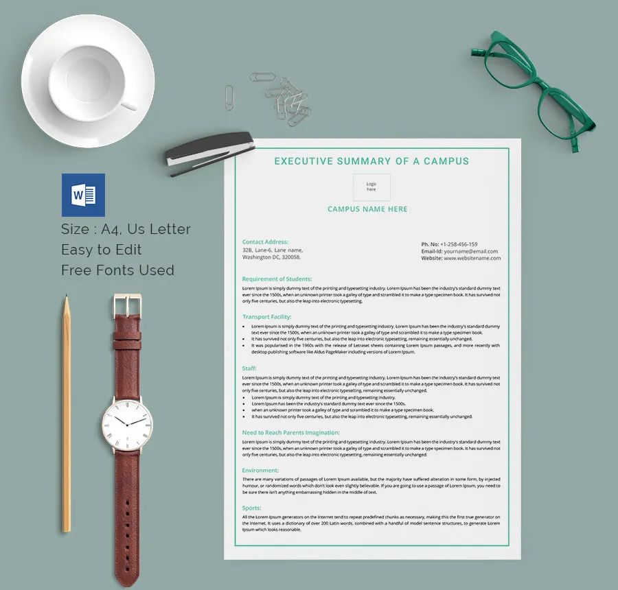 executive summary report template free
