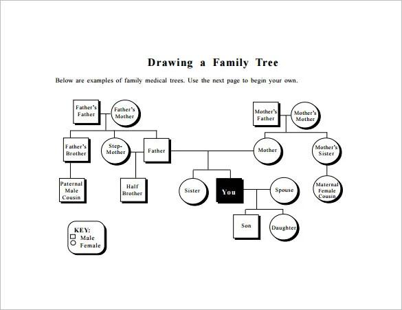 Family Tree Diagram Template \u2013 9+ Free Sample, Example, Format - family tree diagram templates