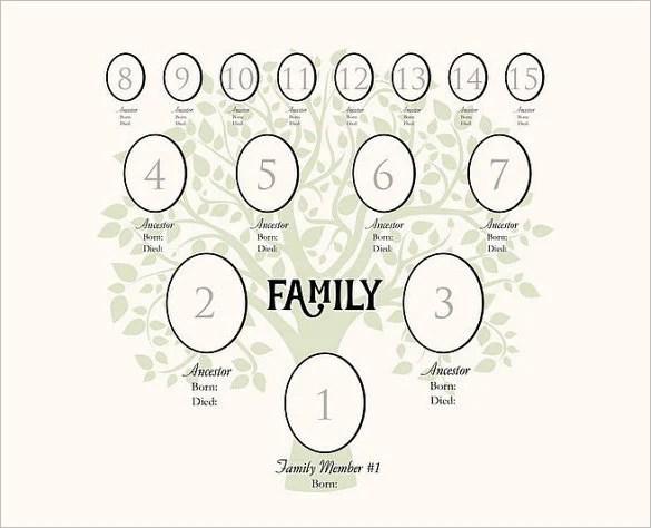 ... 3 Gen Family Tree Template Family Tree Template 1 Family Tree   Family  Tree Example ...