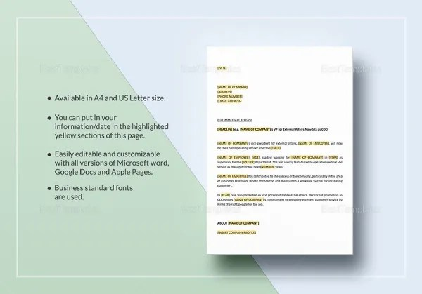 28+ Press Release Template Google Docs How To Get Press For - press release template