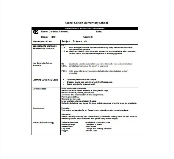 Daily Lesson Plan Template - 13+ Free Sample, Example, Format - daily lesson plan template