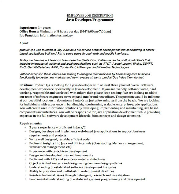 Web Developer Job Description Template \u2013 9+ Free Word, PDF Format - programmer job description