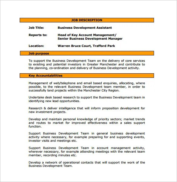 Business Development Job Description Template \u2013 10+ Free Word, PDF