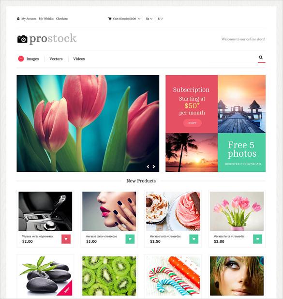 12+ Portfolio Magento Themes  Templates Free  Premium Templates