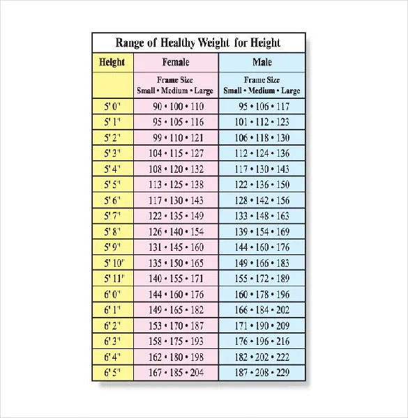 Height Weight Chart Template - 11+ Free Word, Excel, PDF Format - healthy weight chart for women