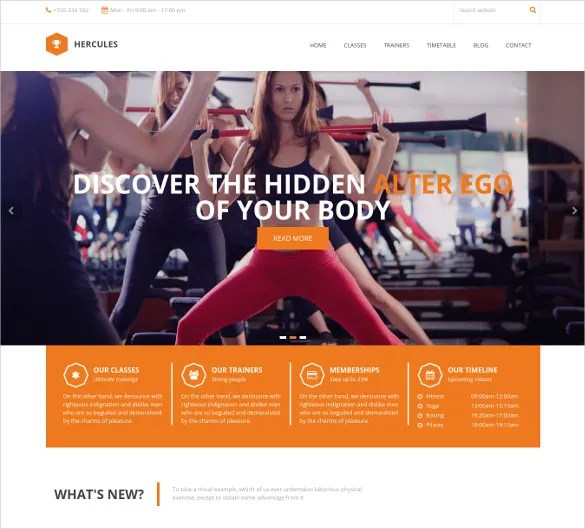 free gym templates - Onwebioinnovate - Fitness Templates Free