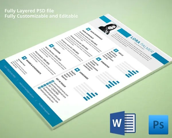 Download Free Fancy Resume Templates Professional Curriculum Vitae