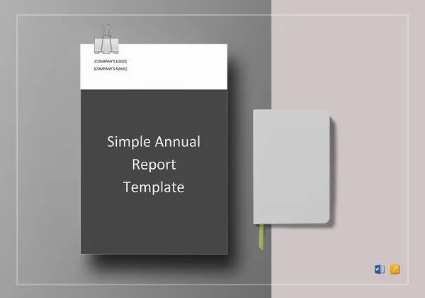 annual financial report template word
