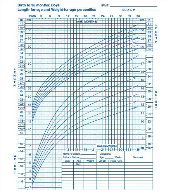 Baby Growth Chart Templates \u2013 12+ Free Excel, PDF Documents Download