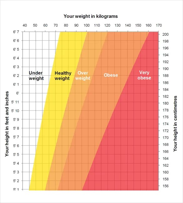 Height Weight Chart Templates \u2013 12+ Free Excel, PDF Documents - healthy weight chart for women