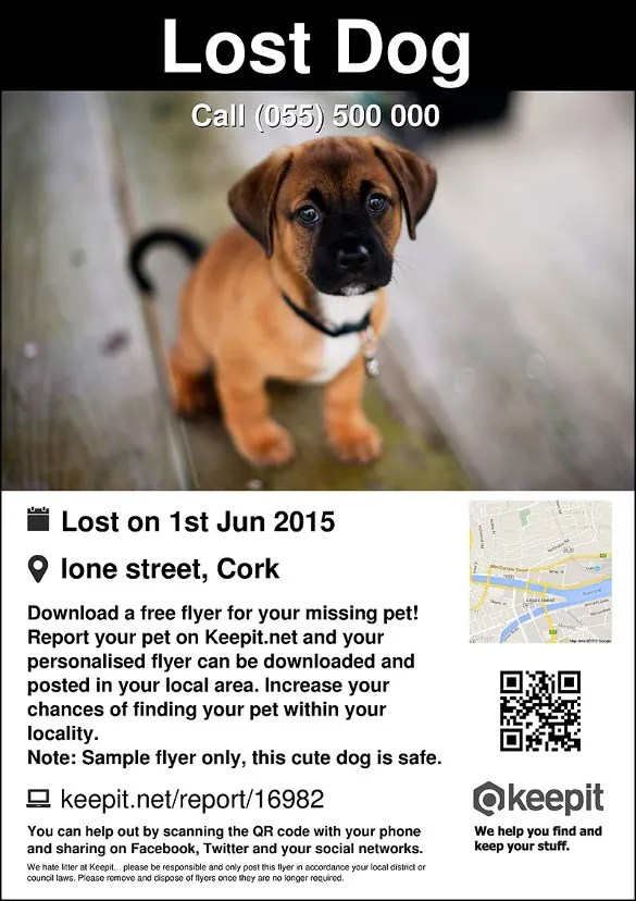 Lost Pet Flyers \u2013 20+ Free PSD, AI, Vector EPS Format Download