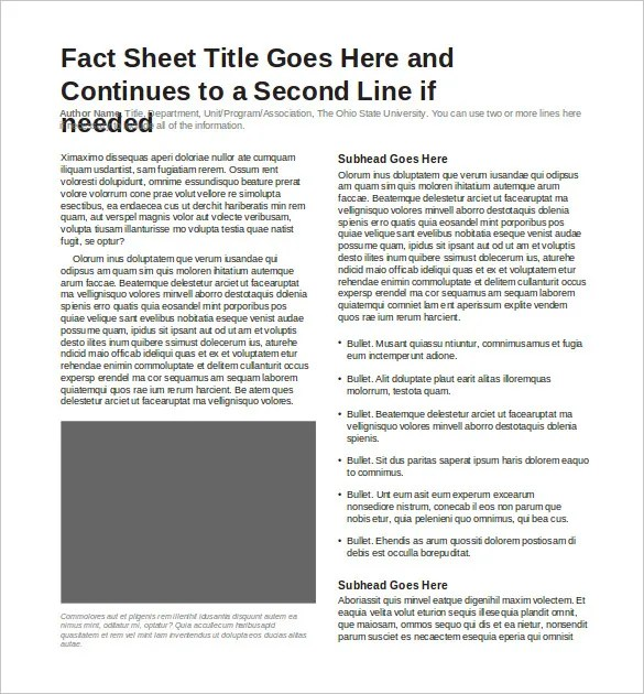 24+ Fact Sheet Templates - PDF, DOC Free  Premium Templates - fact sheet template word