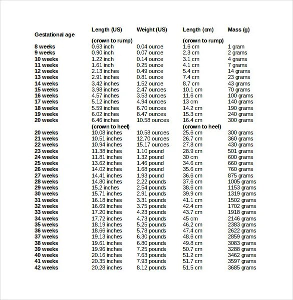 babies weight chart during pregnancy - Josemulinohouse