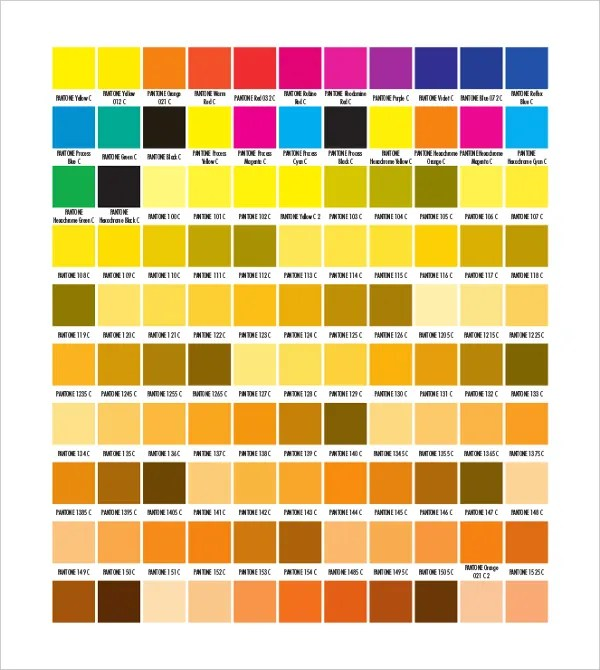 9+ Pantone Color Chart Templates - Free Sample, Example, Format - sample pms color chart