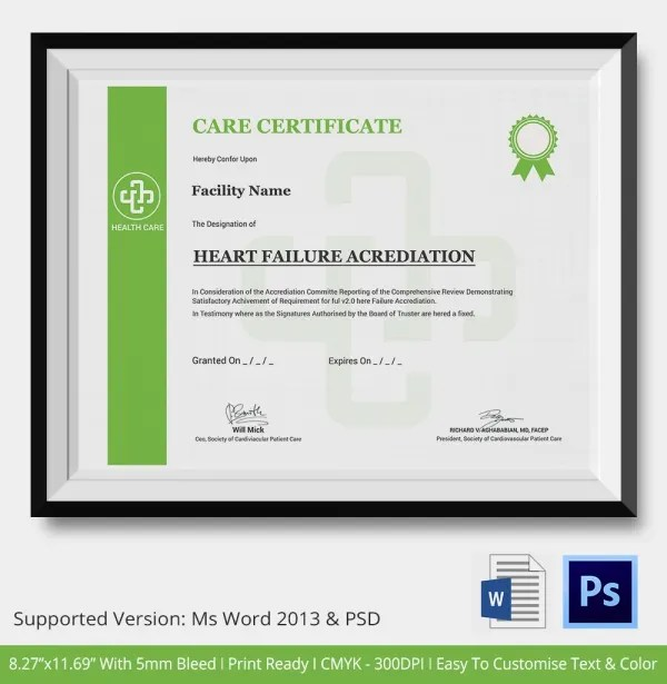 Professional Certificate Template - 10+ Free PDF, PSD, Vector, Eps - Free Professional Certificate Templates