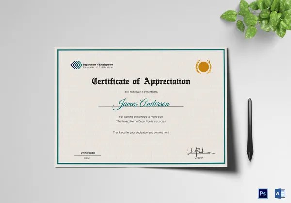 Certificate of Service Template - 11+ Word, PDF, PSD, AI, InDesign