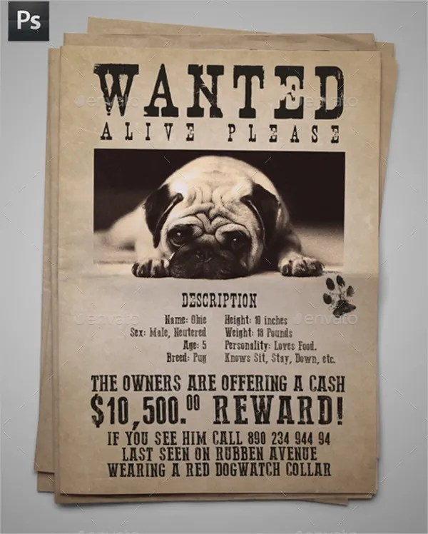 12+ Missing Poster Templates - Free PSD, EPS, AI Format Download - lost pet flyer template free