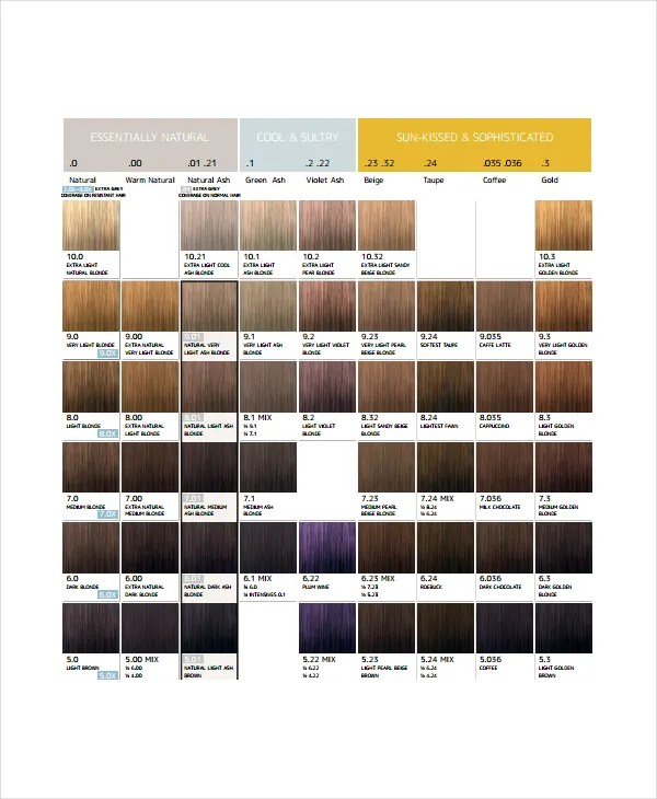 Hair Color Chart Template \u2013 9+ Free Word, PDF Documents Download - hair color chart