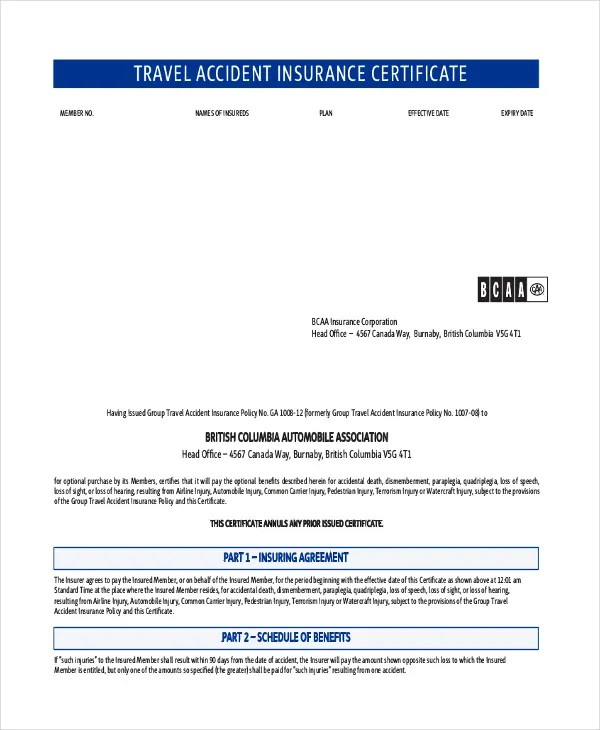 Travel Certificate Template - 9+ Free PDF Documents Download Free