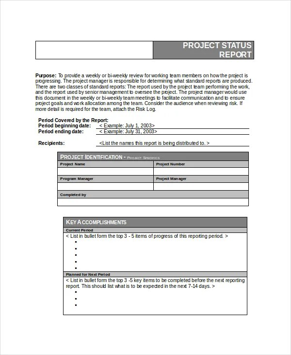 project status report template word - project report template word