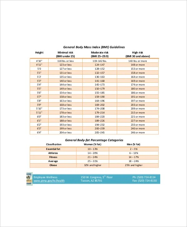 7+ BMI And Body Fat Chart Templates - Free Sample, Example Format