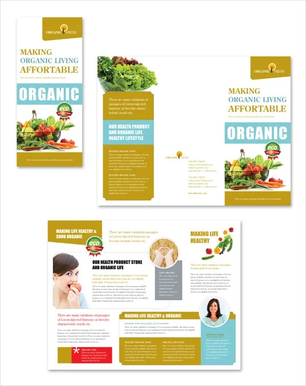 informational brochure template templates free information travel