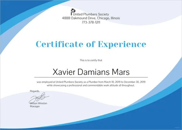 10+ Experience Certificate Formats Free Word  PDF - experience certificate formats