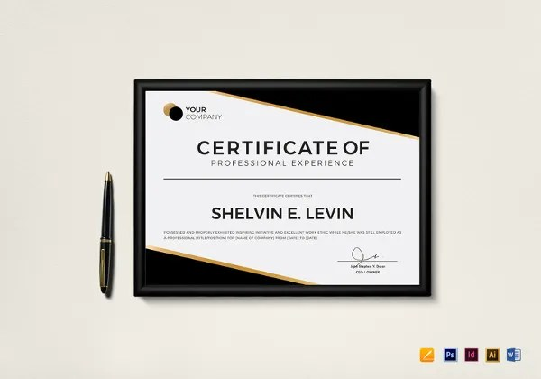17+ Experience Certificate Templates - PDF, DOC Free  Premium - experience certificate templates