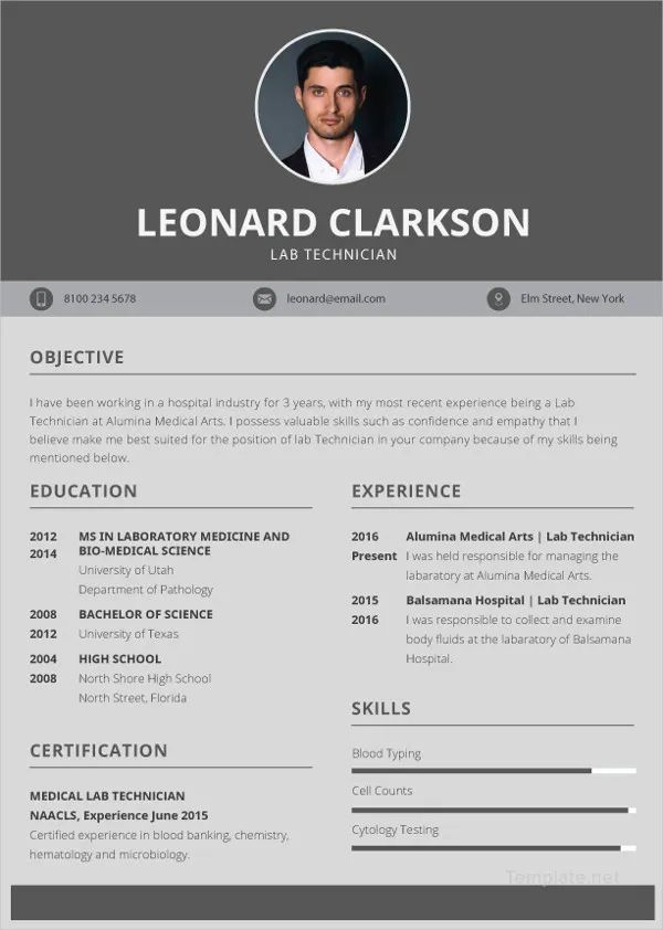 business resume format template