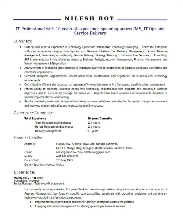 technical consultant resume