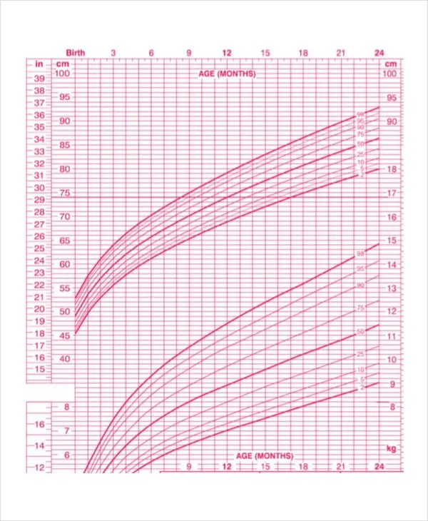 Breastfed Baby Growth Chart Template - 6+ Free Excel, PDF Documents