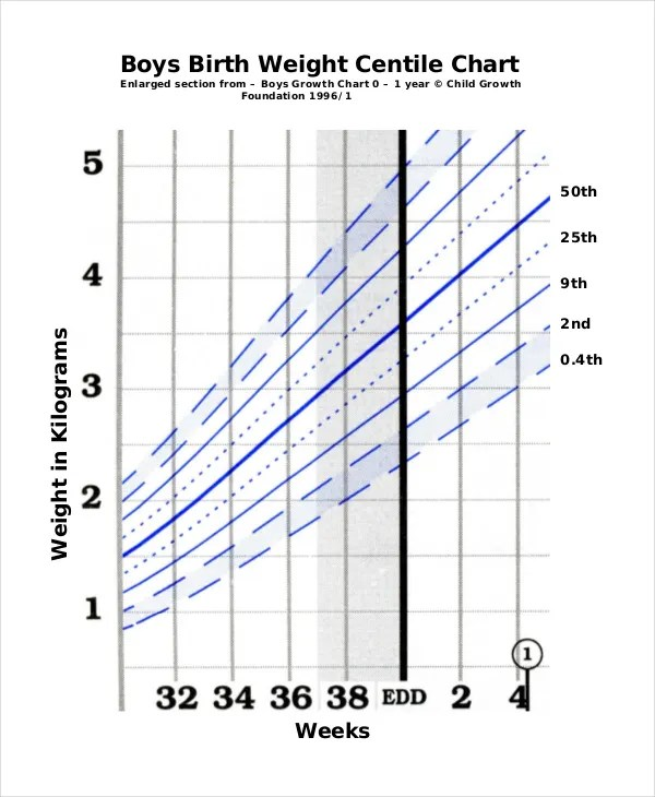 Baby Boy Growth Chart Template - 8+ Free PDF, Excel Documents - boys growth chart