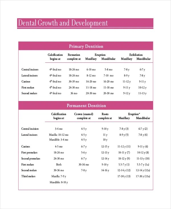 Baby Teeth Growth Chart Template - 5+ Free PDF Documents Download