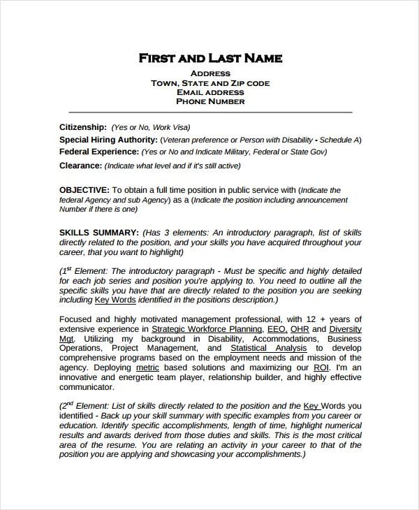 federal it resume example