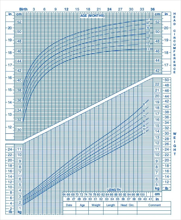Cdc Growth Chart Template  EnvResumeCloud