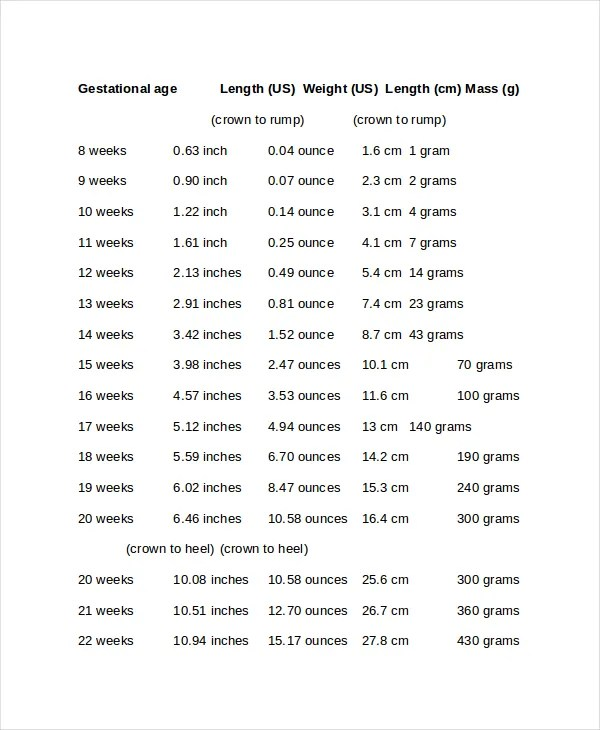 Baby Size Chart Template 62 best shoes images on pinterest carters