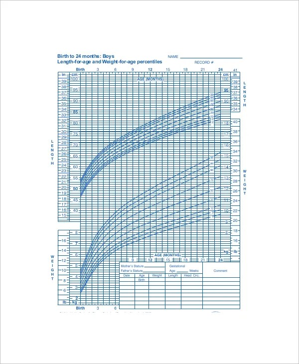 Baby Weight Percentile Chart Template - 5+ Free Excel, PDF Documents