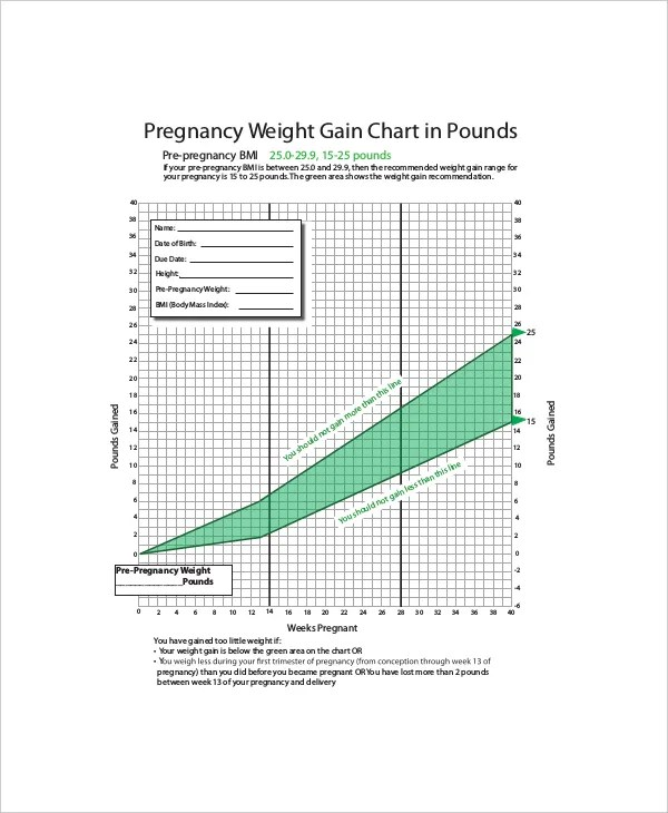4+ Sample Baby Weight Charts During Pregnancy - Free Sample, Example