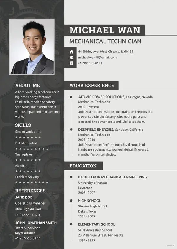 resume template with one job
