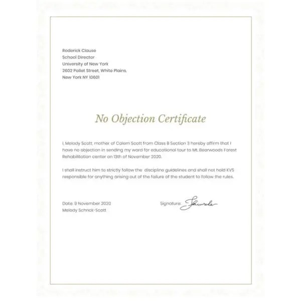 12+ No Objection Certificate Templates - PDF, DOC Free  Premium