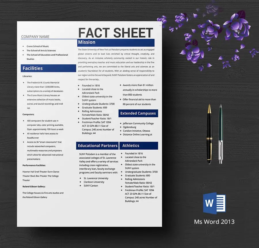 free fact sheet template - Onwebioinnovate