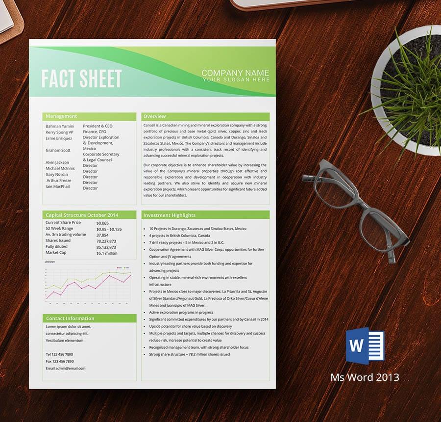 company info sheet template - Alannoscrapleftbehind - information sheet templates