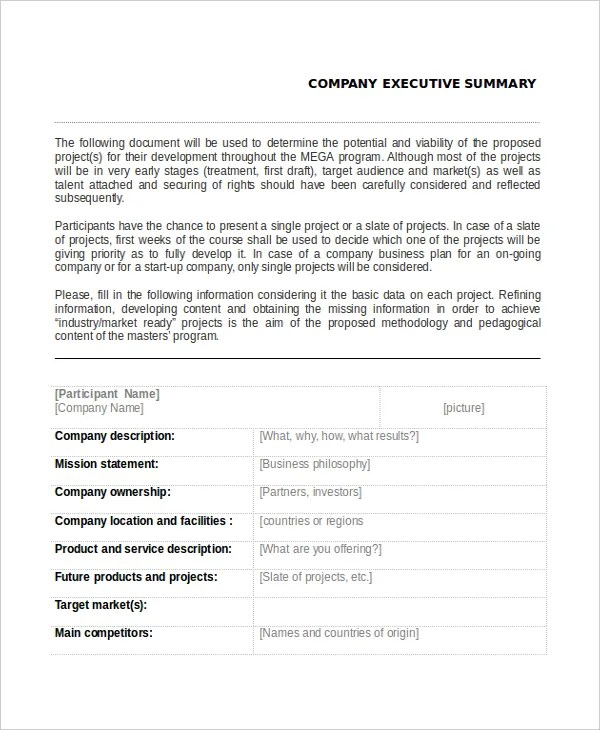 7+ Executive Summary Examples Free \ Premium Templates - business summary template