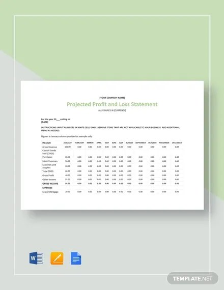 12+ Profit and Loss Templates in Excel Free  Premium Templates