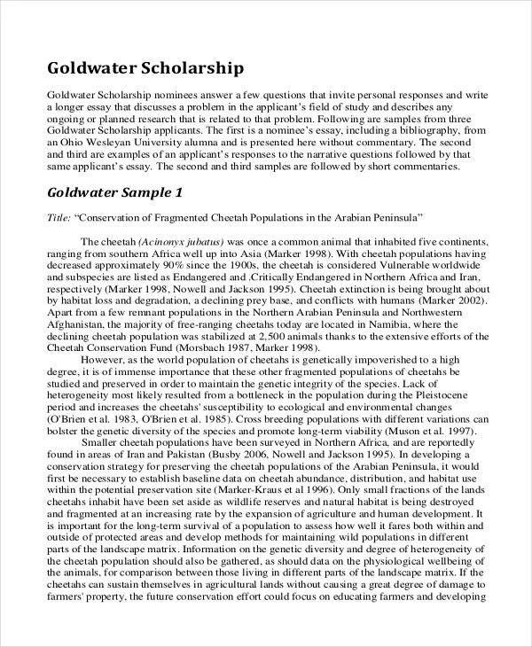 example essay for scholarship common application essay format essay