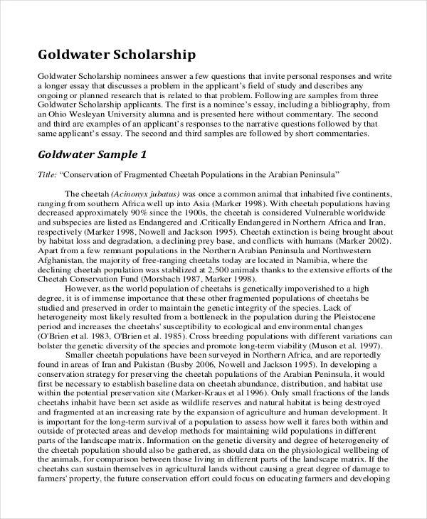 scholarships essays examples