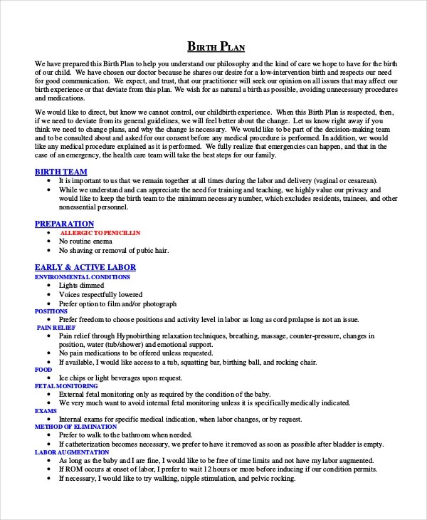 Birth Plan Template - 9+ Free Word, PDF Documents Download Free - birth plan sample