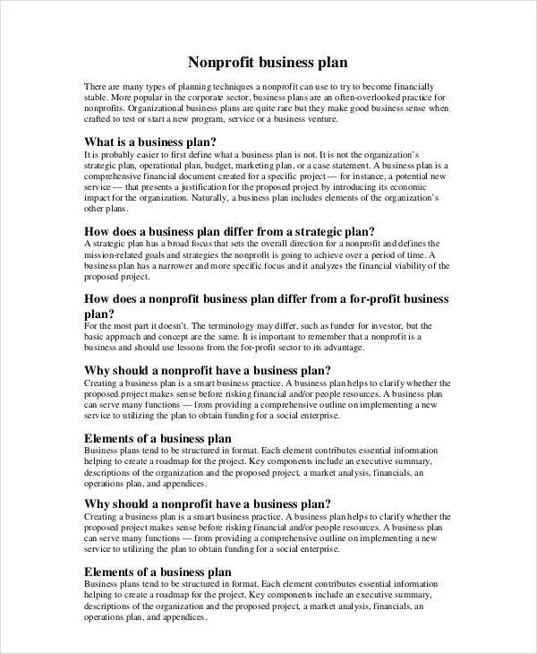 non profit business plan template word